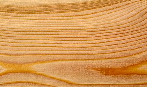 tipo di legno
